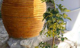 Οι Κορωνέικες Τζάρες, τα μεγάλα πήλινα δοχεία για τη μεταφορά της τοπικής γεωργικής παραγωγής.