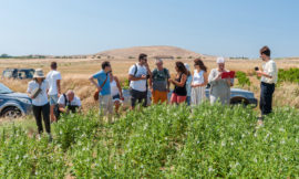 Lemnos Philema – Φεστιβάλ Γαστρονομίας και Οίνου